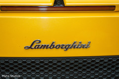 lamborghini,indian wedding transportation,wedding car