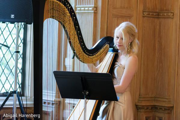 indian wedding harp performance,indian wedding performances,indian wedding details