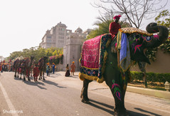 baraat,indian wedding ceremony