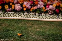indian wedding program,indian wedding ceremony,indian wedding photography