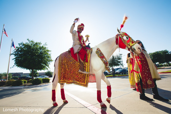 baraat,indian groom,baraat horse,indian wedding baraat