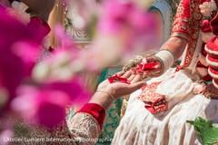 indian wedding ceremony,indian wedding ritual,details