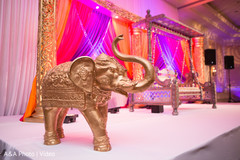 sangeet,floral and decor,pre-wedding celebration