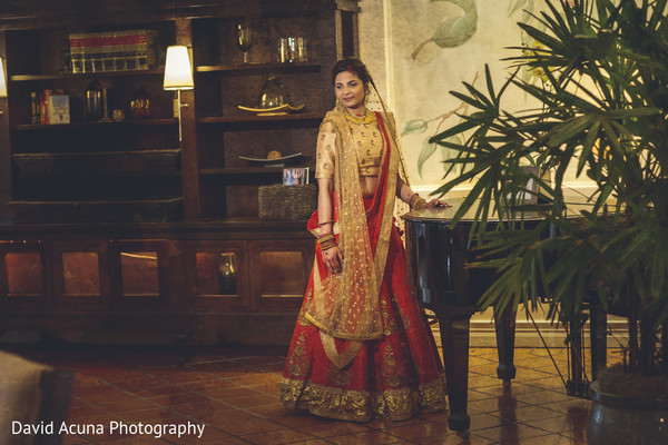 indian bride,indian wedding photography,portrait