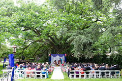 planning and design,indian wedding ceremony