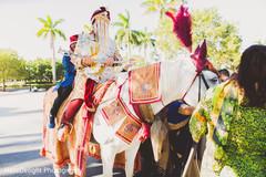 baraat,baraat horse,pre-wedding traditions,indian groom