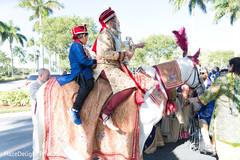 baraat,baraat horse,pre-wedding traditions,indian groom,sarbala