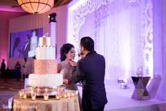 indian wedding reception,indian bride and groom,indian wedding cake,indian wedding cake design