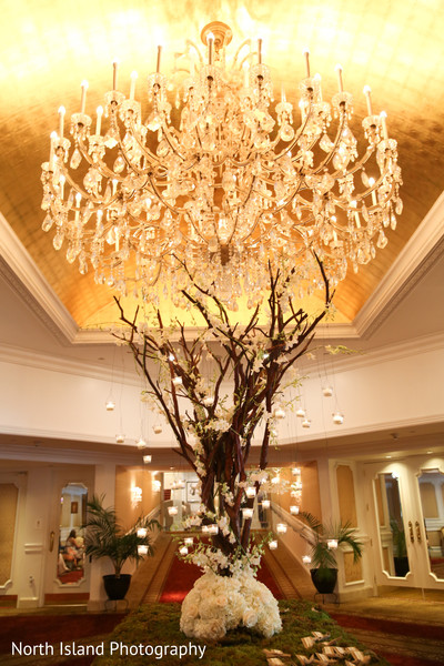 Magnificent Indian wedding decoration.
