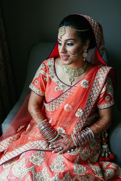 Delightful indian bride