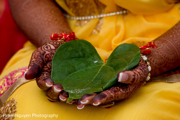 Indian bride's hands holding betel leaf close up