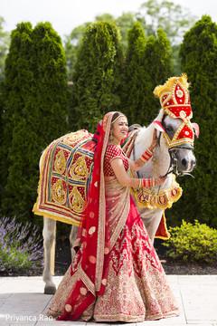 red lengha,bridal lengha,baraat horse