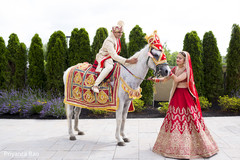 indian groom,baraat,baraat horse
