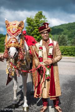 indian groom,baraat horse,indian wedding photography