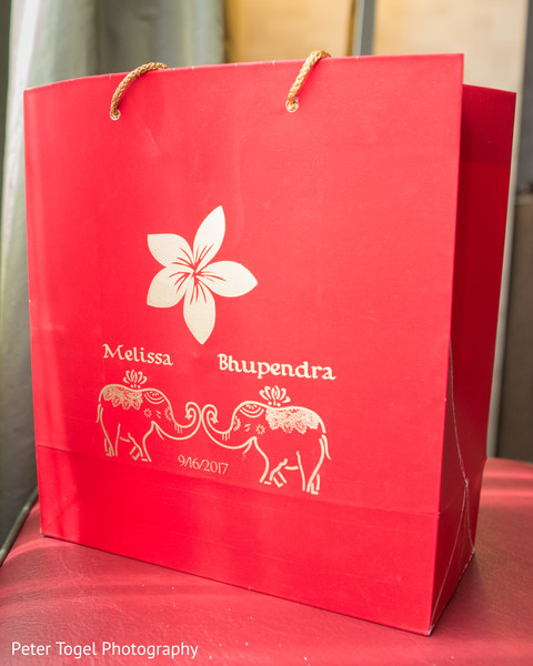 Personalized Indian wedding gift bag.   Photo 133591