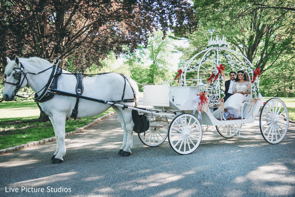 indian wedding,white horse,carriage