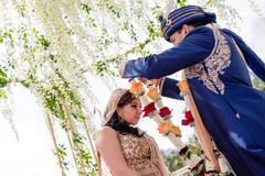 indian wedding ceremony,indian wedding mandap,jaimala