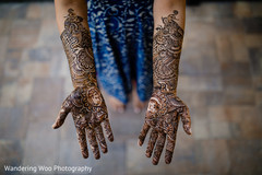 bridal mehndi,mehndi artist,mehndi party