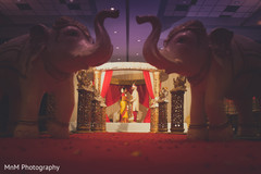 indian wedding gallery,indian bride and groom,indian wedding ceremony,indian wedding decor