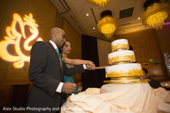 indian wedding reception,cake cutting,indian bride and groom
