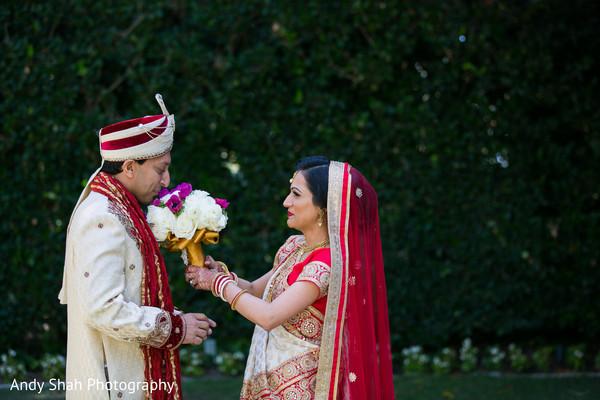 Indian lovebirds first glance