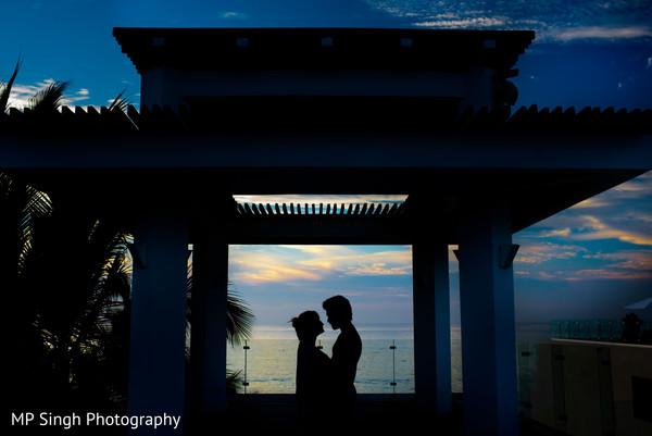 Indian lovebirds silhouette