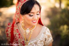 Beautiful indian bride's portrait