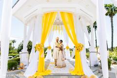Indian lovebirds wedding portrait