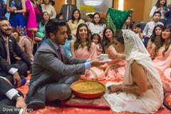 Indian lovebirds' wedding ritual