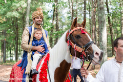 indian wedding baraat,baraat,pre- wedding celebrations,baraat horse,indian groom