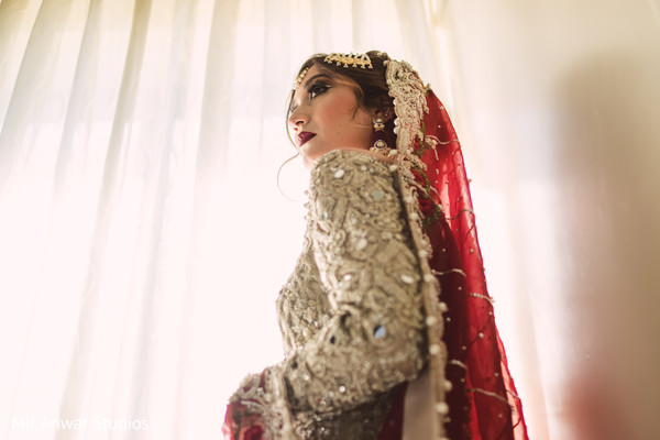 Fantastic indian bride's photo session