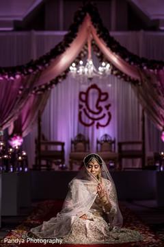 Elegant indian bride posing for photoshoot