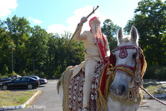 Elegant Indian groom riding on a baraat white horse.