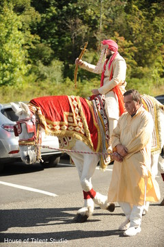 Elegant Indian groom riding baraat white horse.