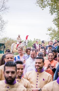 Elegant Indian groom riding baraat white horse.
