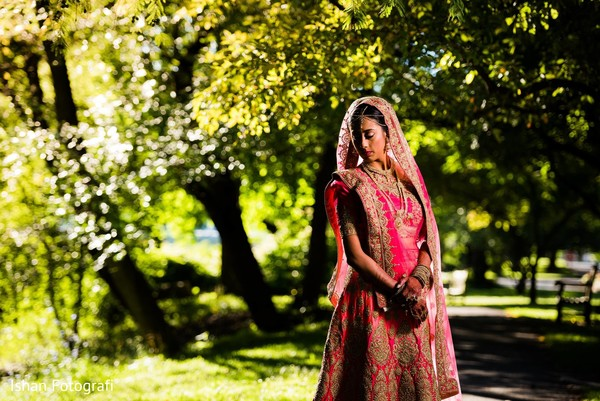 Stunning capture of the beautiful maharani wearing the Sari