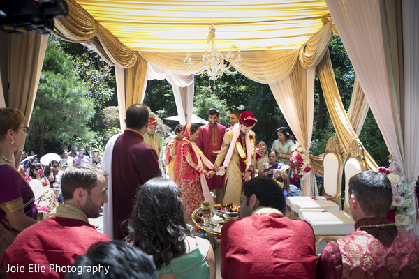 indian wedding,guests,newlyweds,maharani
