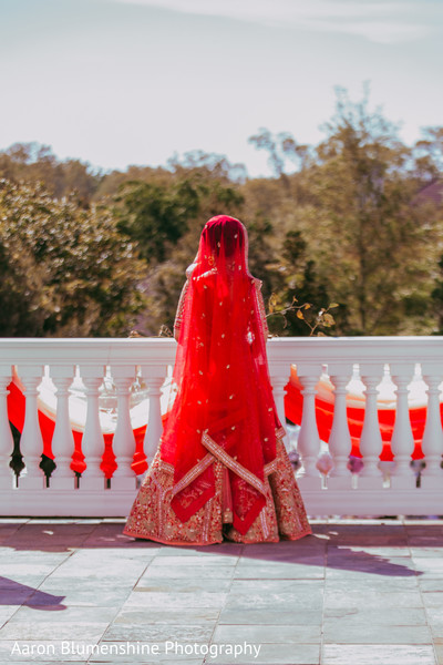 Fabulous red and gold dupatta