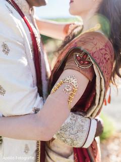Detail of the beautiful sari worn by the maharani