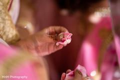 Beautiful capture of a rose petal on the maharani's hands