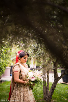 Portrait of the beautiful Indian bride outdoors