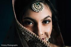 Don't miss this beautiful maharani portrait