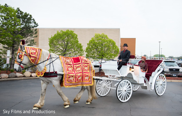 baraat,carriage,horse