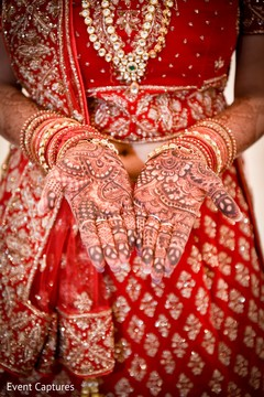 Great details on maharanis henna art.