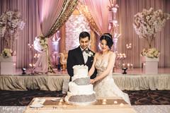 Maharani and Raja cutting the wedding cake