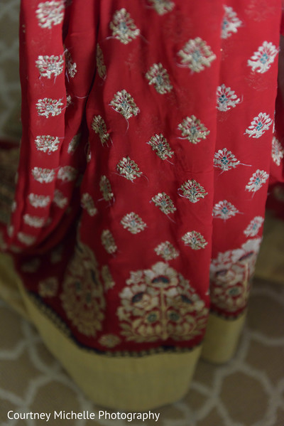 Maharanis lengha embroidery capture.