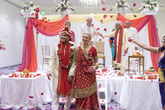 Indian lovebirds getting rose petals from guests.