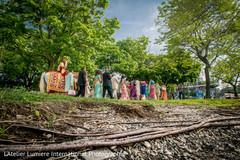Dreamy Indian pre-wedding baraat capture.