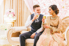 Dazzling indian lovebirds having a toast.