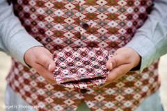 Beautiful fabric of Raja's vest